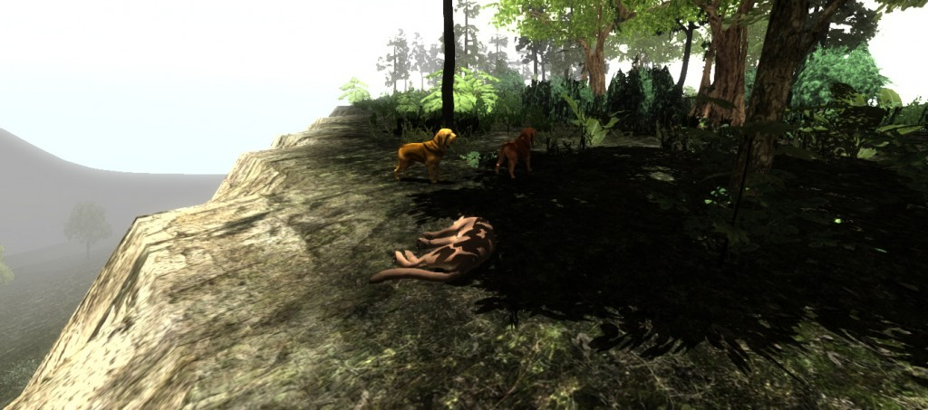 Dead puma
