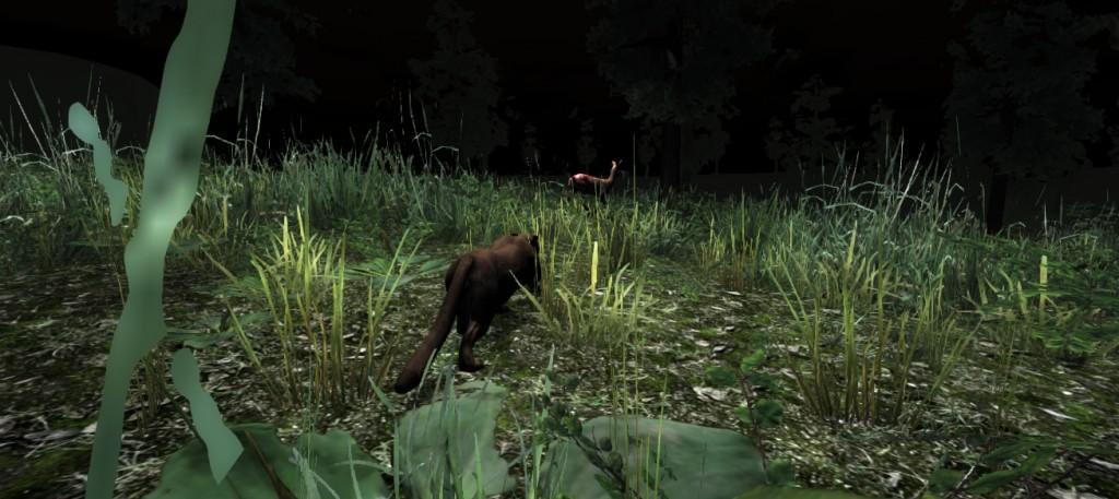 night hunt