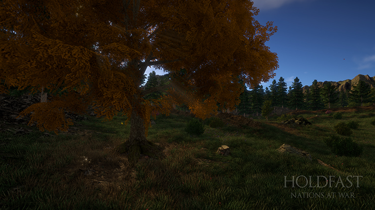 Holdfast NaW - Crosshills Environment 1