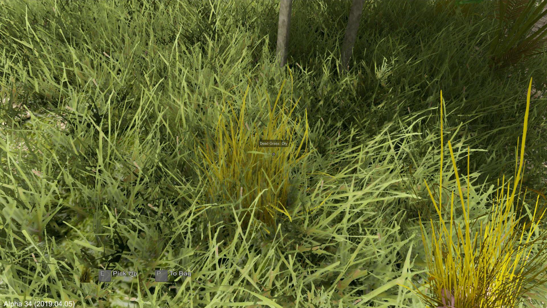 EtP_A34_Dead_Grass