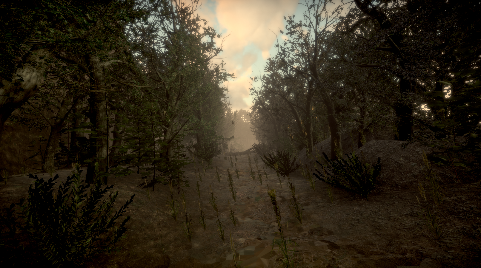 forest_path.png