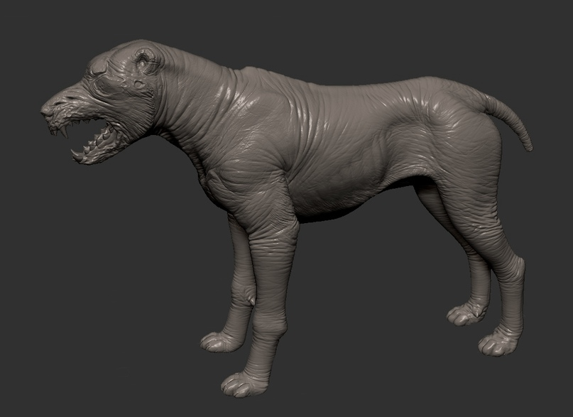 high-poly of a blind dog