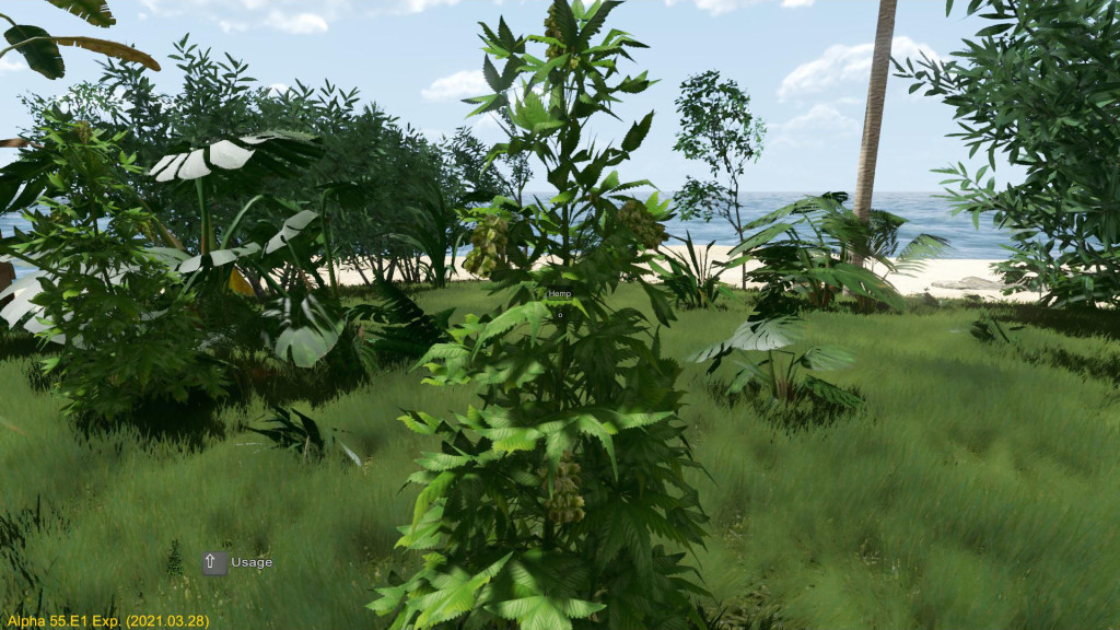 This image has an empty alt attribute; its file name is etp-hemp.jpg