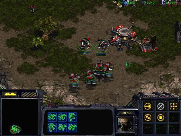 Terran units shield