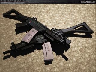 http://criticalpointgame.com/assets/images/misc/SIG552Commando.jpg