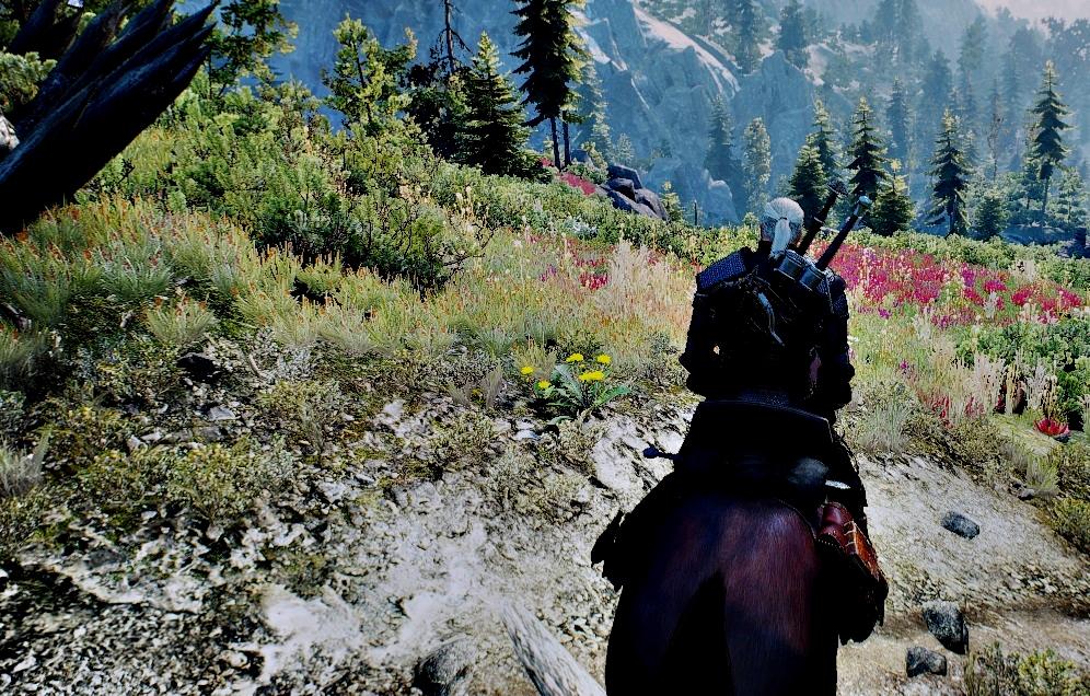 The Witcher 3 Wild Hunt E3 2013-14 Graphics mod file - Mod DB