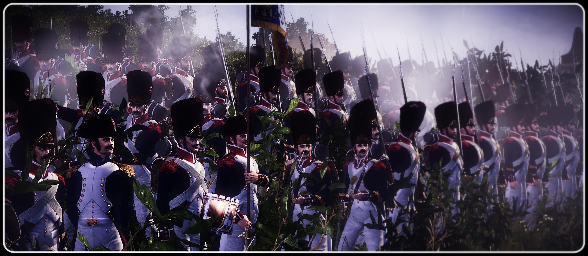 Napoleon Total War Limited Edition  amazoncom