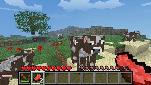 Minecraft скачать на psp