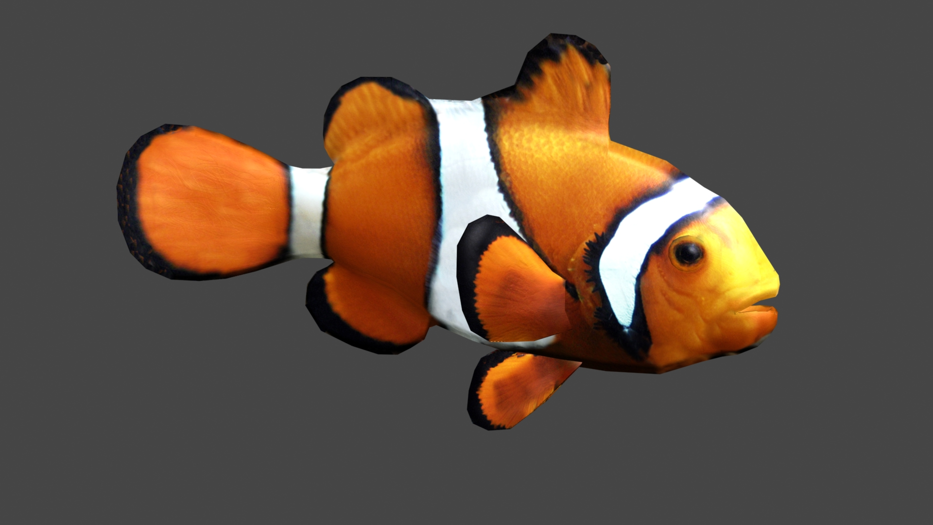 Clownfish image jaws of evolution mod db for Pictures of clown fish