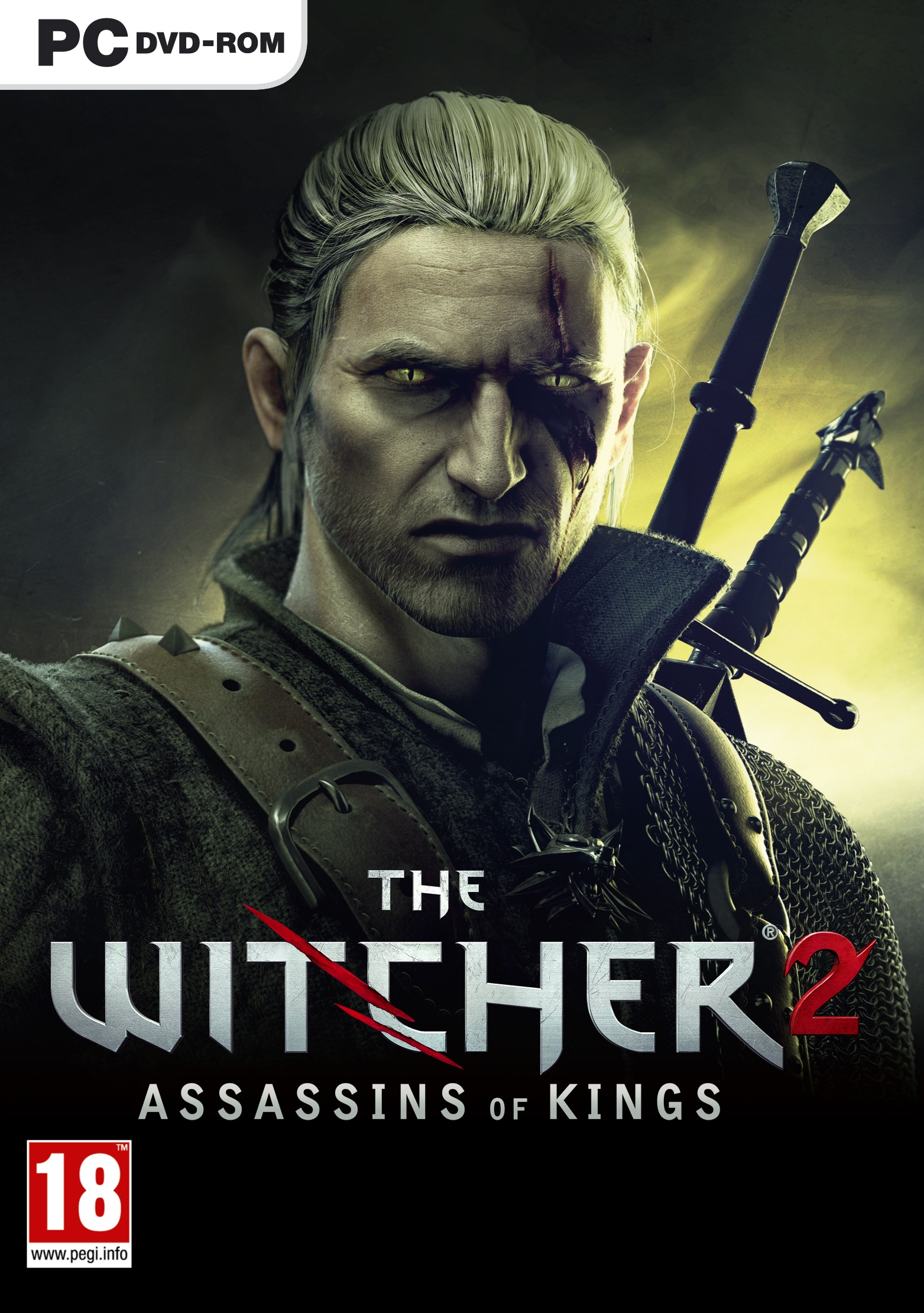 Witcher 2 Abstürze