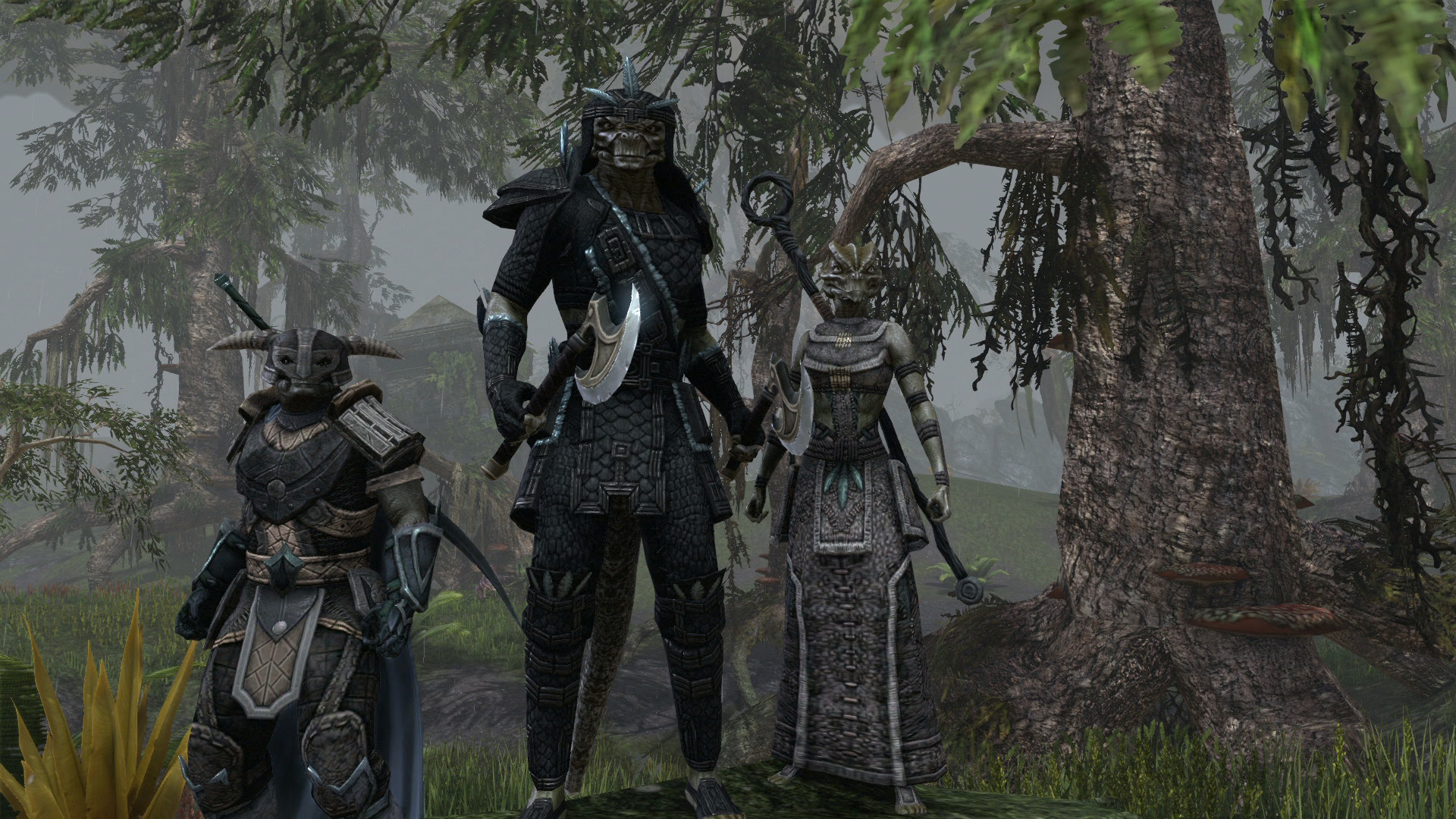 Media RSS Feed Report media Argonian Group  view original Elder Scrolls Online Argonian Armor