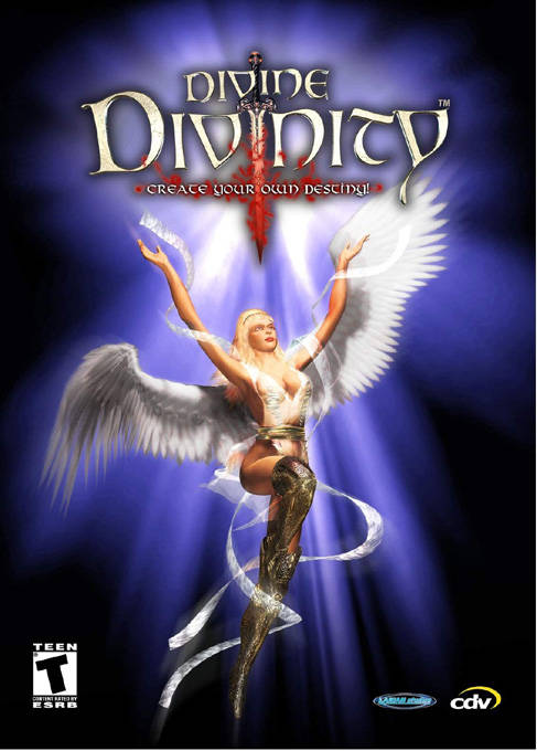 Divine Divinity Windows game