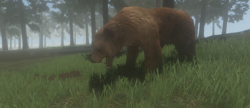 Bear Simulator!