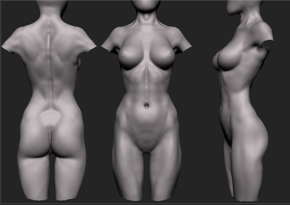 Female Anatomy Study image - 3D Artists Group - Mod DB