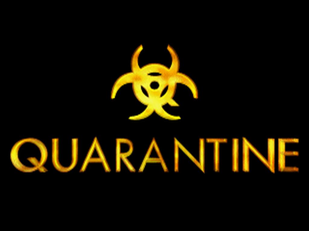 quarantine groups dos moddb company