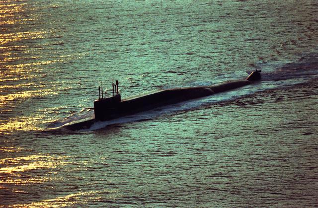 бдрм дельфин подводная лодка