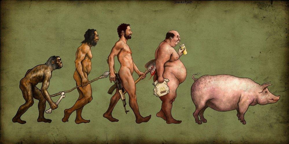 Add Media Report Rss Human Evolution View Original