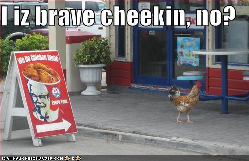 Funny Kfc Pictures 13 Pics: Humor, Satire, Parody