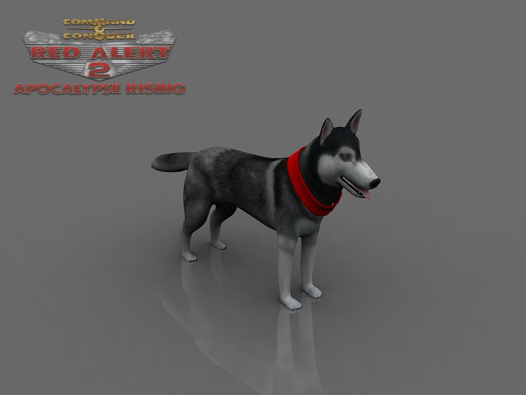 Soviet Attack Dog