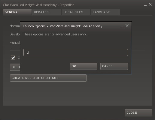 Steam Launch Options