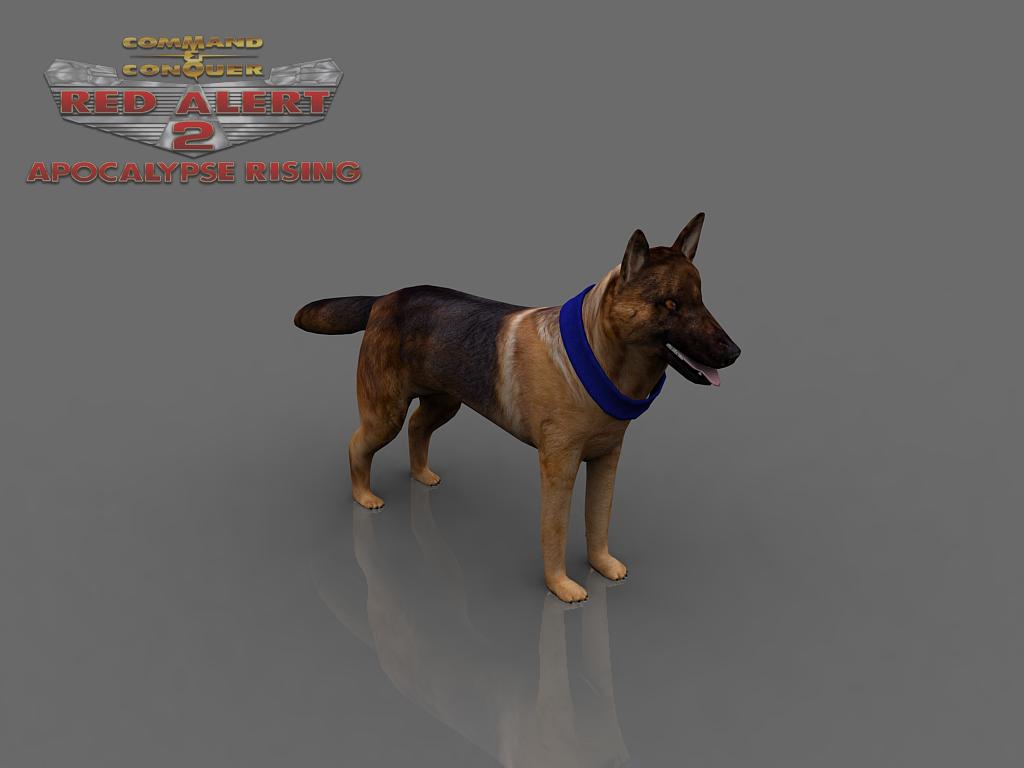 Allied Attack Dog