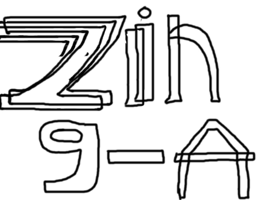 zingagaming company
