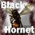 BlackHornet