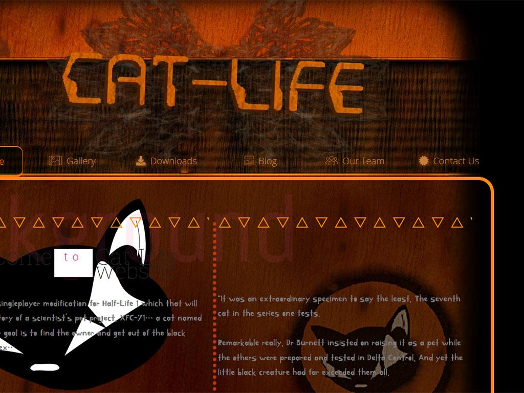 CatLifeSite2