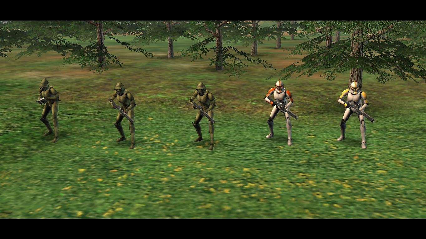 8 Senior1 Forest