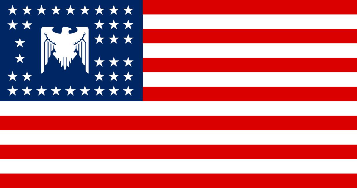 US flag 2020s