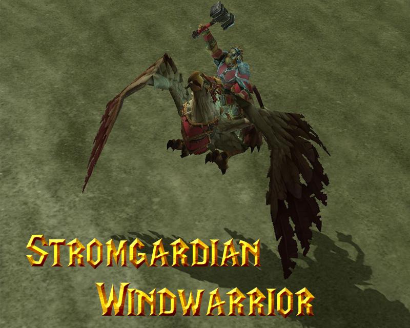 Stromgardian Windwarrior