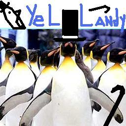 Yellandy