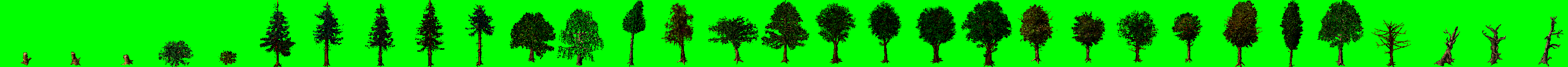 Vanille tree texture example.