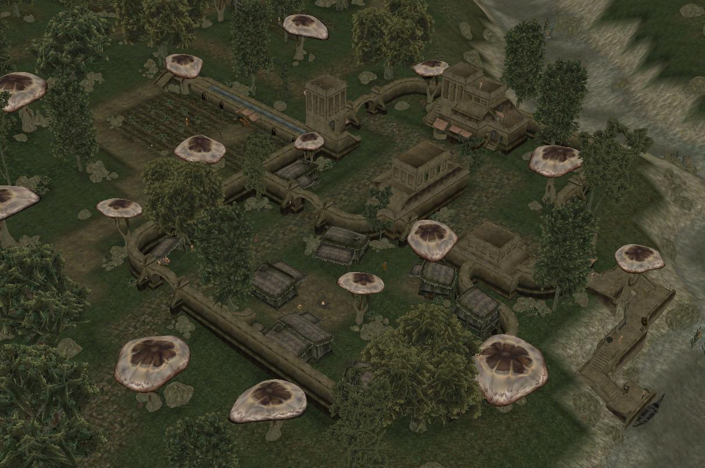 Dren Plantation 1