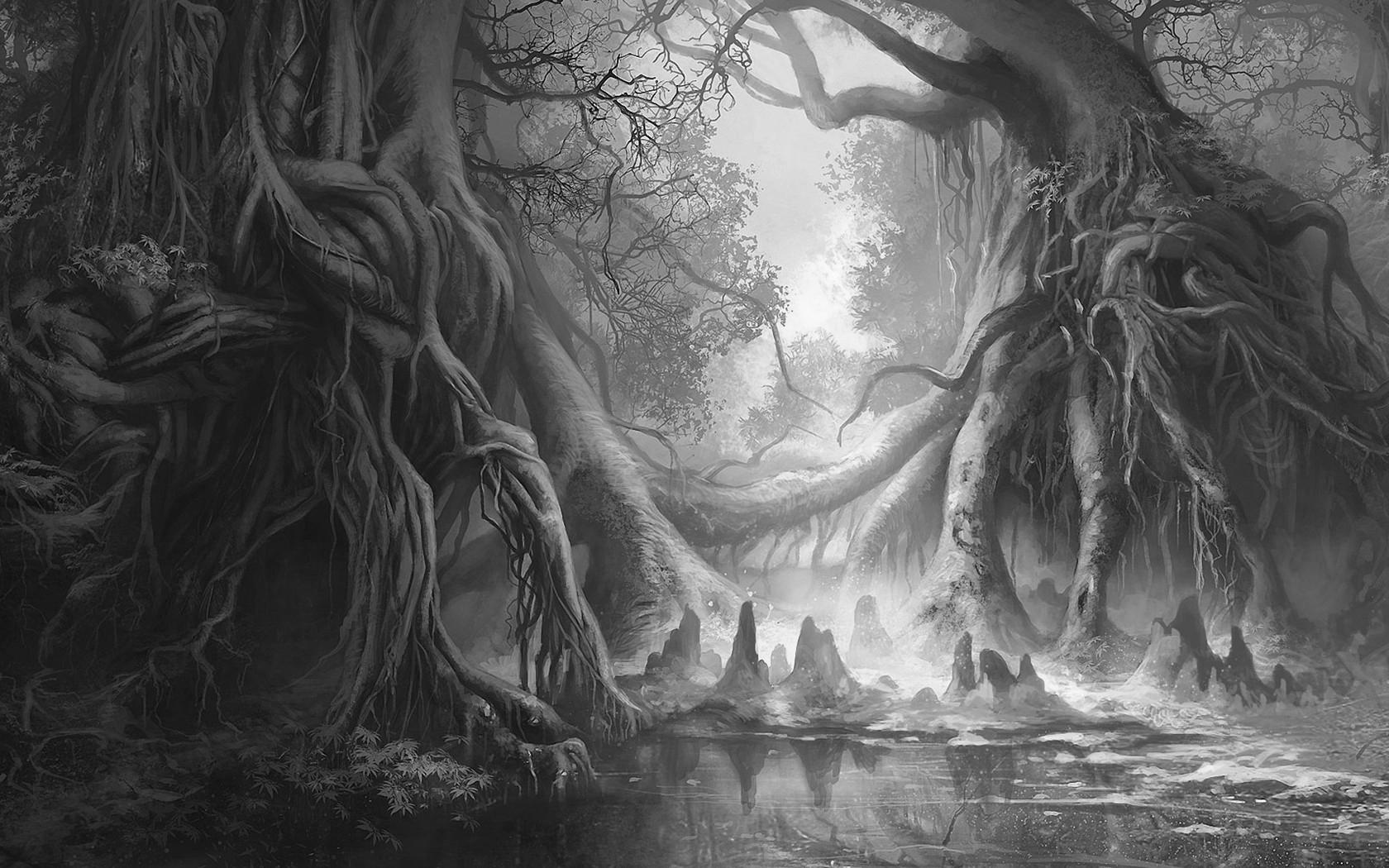 gray art forest fantasy world th