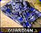 guaticon
