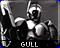 gullicon2
