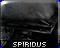 sprdicon