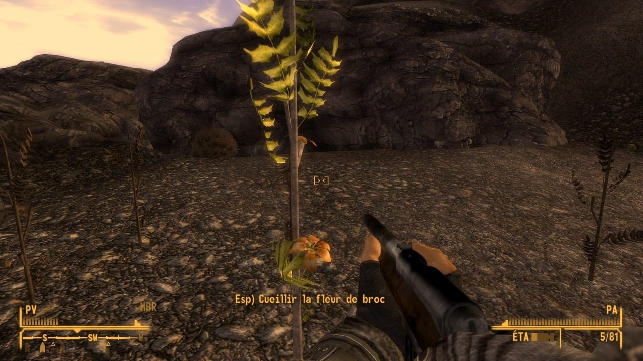 Fallout 3   NV