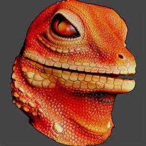 lizard orange