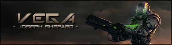 Vega banner
