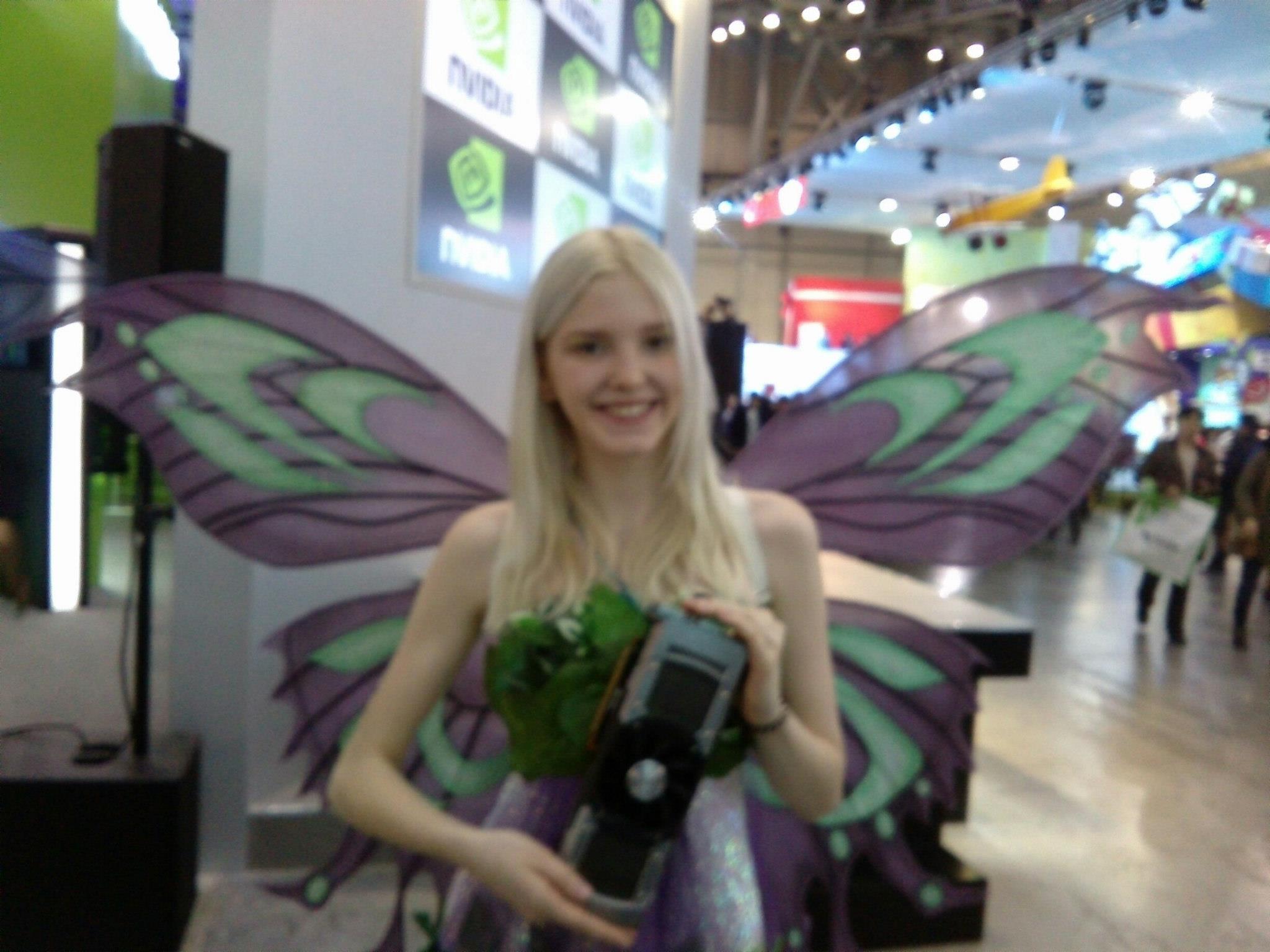 wingedhussar