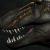 Tomozaurus