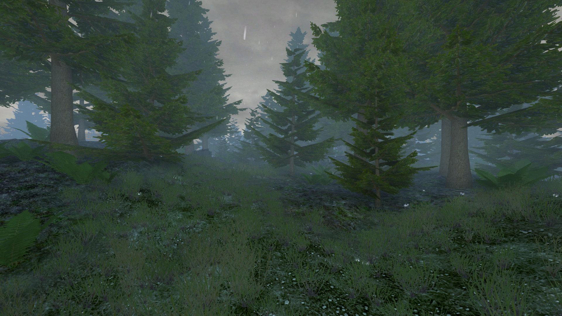 TG Fields rain
