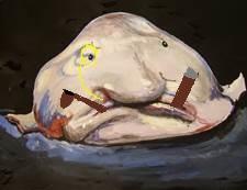 blob fish info - 600×450