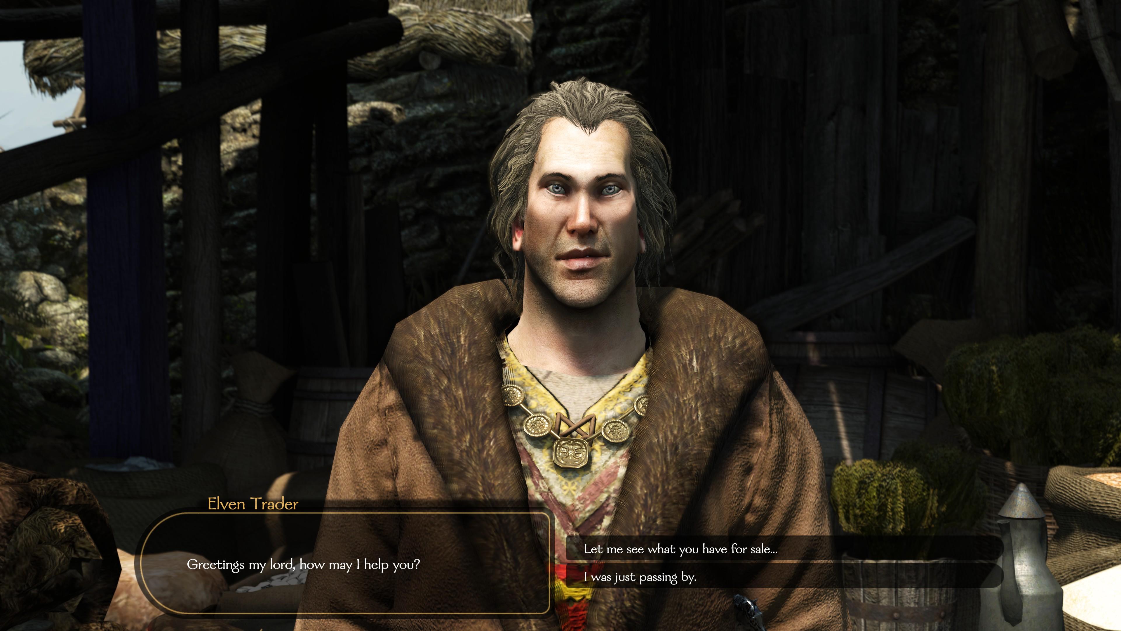 High Elf Trader