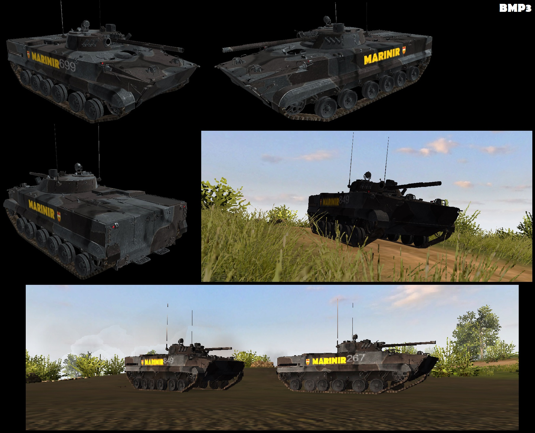 BMP3 A