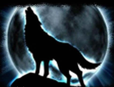 ao_Wolf-Avatar_2.jpg