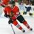 Hockey48