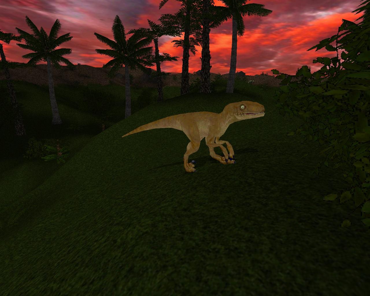 female velociraptor